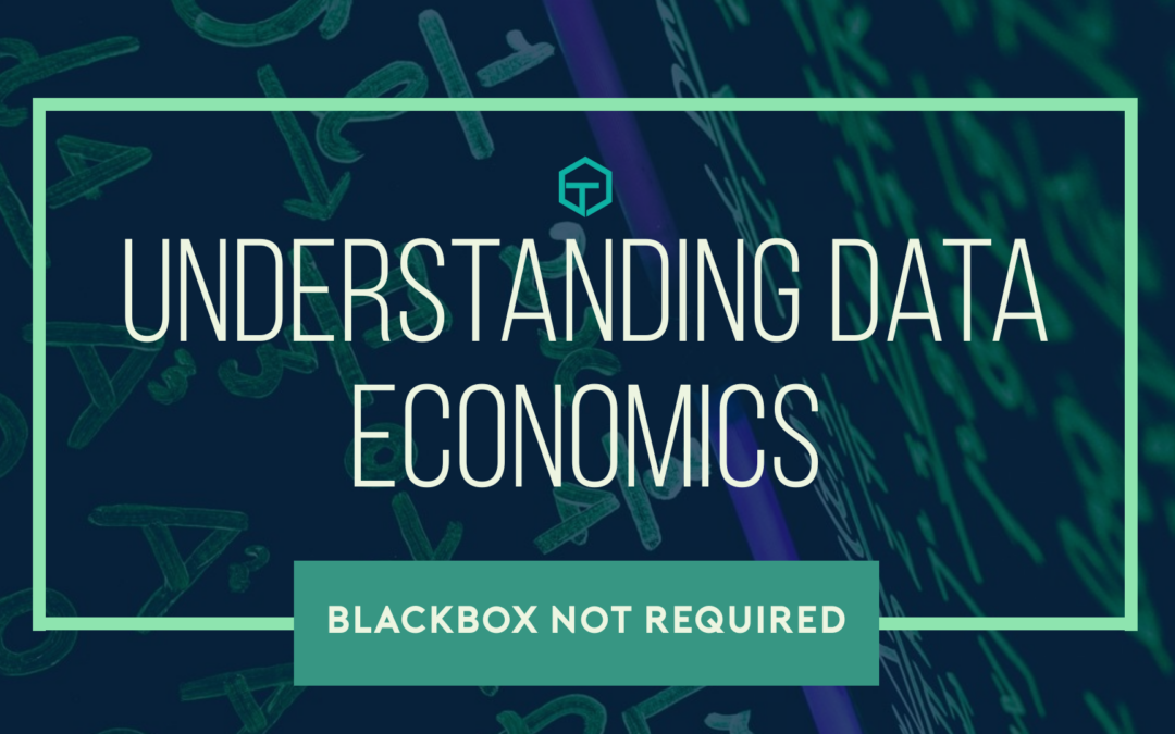 Understanding Data Economics