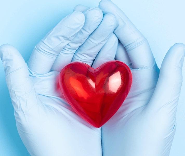 Tartle Hands Heart Blue Love